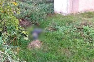 Phát hiện thi thể người đàn ông trong khu vực chùa Huyền Không Sơn Thượng - TT Huế