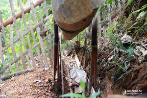 Chiếc bẫy có thể bắt cả đàn chuột của người Thái ở Nghệ An