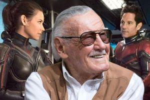 Nhìn lại những vai diễn đầy thú vị của Stan Lee trên màn ảnh rộng