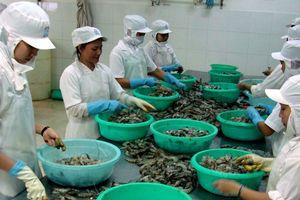 Khảo sát đánh giá chất lượng doanh nghiệp Việt Nam hội nhập CPTPP: Công ty TNHH thủy sản NIGICO