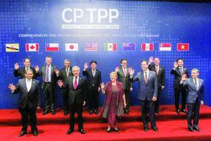Danh sách doanh nghiệp tham gia khảo sát chất lượng doanh nghiệp Việt Nam hội nhập CPTPP