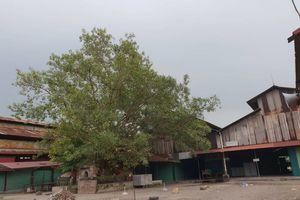 Hàng loạt chợ ở TP Bắc Giang thiếu PCCC, người dân hốt hoảng nếu xảy ra cháy