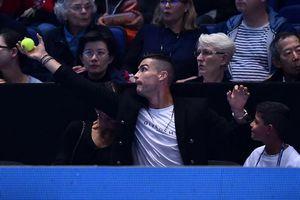 Ronaldo trổ tài bắt bóng tennis khiến bạn gái 'dính đòn' oan
