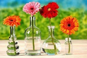 Mê mẩn với 10+ mẫu hoa để bàn làm nổi bật không gian sống