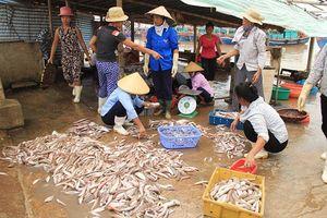 Thanh Hóa: Ô nhiễm môi trường ở làng nghề chế biến thủy, hải sản