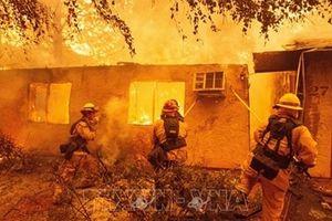 Chưa có thông tin người Việt Nam thiệt mạng trong thảm họa cháy rừng
