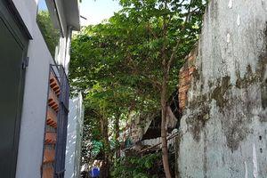 Nam thanh niên treo cổ trên cây trứng cá ở Đà Nẵng