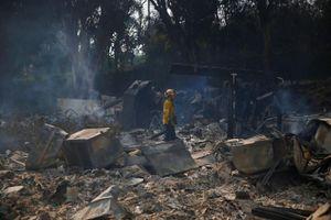 Số người thiệt mạng do cháy rừng ở California tăng lên 44