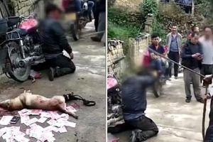 Ăn trộm chó, cẩu tặc bị dân làng 'xử' ngay bên cạnh chú chó đầy máu me cùng đống tiền giấy
