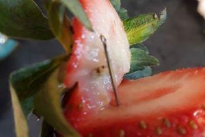 'Khủng hoảng dâu tây' tại Australia từ cây kim của nữ Việt kiều