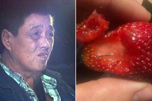 Australia xét xử kẻ nhét kim vào dâu tây, hoa quả khác