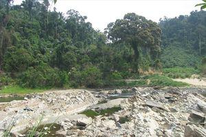 Bộ Tài nguyên Môi trường cảnh báo khát nước sinh hoạt sẽ còn phức tạp