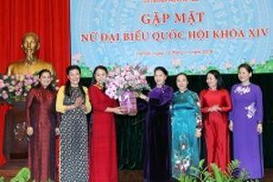 Gặp mặt các nữ đại biểu Quốc hội khóa XIV