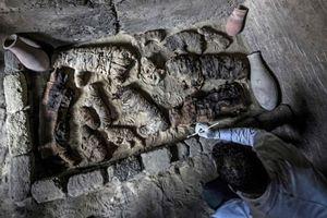 Xác ướp mèo được tìm thấy trong các ngôi mộ 6.000 tuổi ở Ai Cập