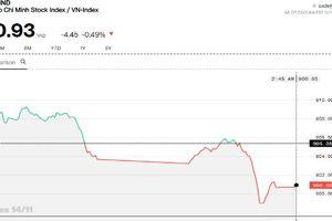 Chứng khoán chiều 14/11: Phân hóa thể hiện rõ, nhà đầu tư 'rời bỏ' dầu khí và ngân hàng