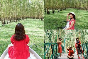 Ghé rừng tràm Trà Sư mùa nước nổi đảm bảo có ảnh đẹp 'sống ảo' mang về