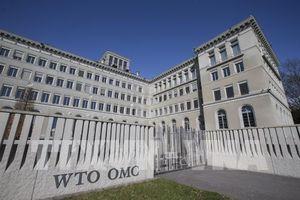 WTO đang giải quyết số vụ tranh chấp thương mại nhiều nhất trong 16 năm qua