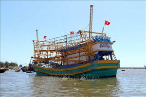 Ngư dân 'tàu 67' mắc cạn với thủ tục thanh toán bảo hiểm