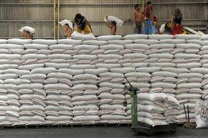 Iran nhập khẩu gạo giảm cả về khối lượng và giá trị