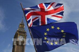 EC dự phòng kịch bản không đạt thỏa thuận Brexit