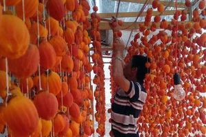 Lâm Đồng đầu tư hơn 13 tỷ đồng phát triển các sản phẩm lợi thế