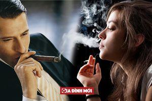 Xì gà và thuốc lá loại nào có hại hơn?