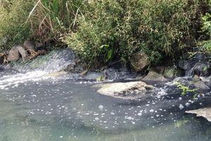 Xử phạt Công ty Fococev Quảng Bình gần 70 triệu vì xả thải ra môi trường