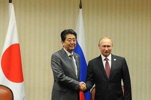 Lãnh đạo Nhật Bản, Nga thảo luận Hiệp ước hòa bình, vấn đề Triều Tiên