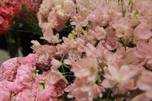 Chiêm ngưỡng 5.000 loại hoa tươi Nhật Bản tại The Japanese Bloom 2018