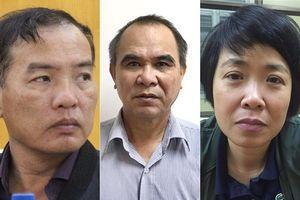 Vì sao ông Cao Duy Hải và bà Phương Anh bị bắt?