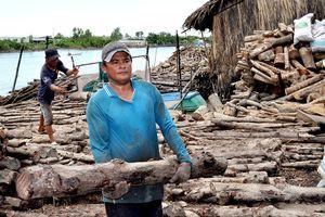 Cận cảnh nghề hầm than từ cây đước ở Cà Mau