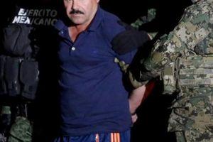 Trùm ma túy khét nhất thế giới El Chapo bị dùng làm 'vật tế thần'?