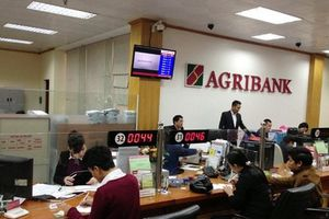 Công ty con Agribank trúng thầu công ty mẹ: Nghi vấn về tính minh bạch?