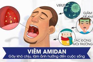 Lựa chọn địa chỉ cắt amidan được rất nhiều người bệnh quan tâm
