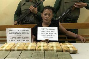 Triệt phá đường dây vận chuyển ma túy 'khủng' từ biên giới vào Việt Nam tiêu thụ