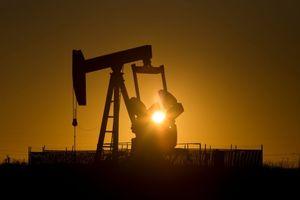 Giá dầu thế giới 15/11 bất ngờ quay đầu tăng nhẹ