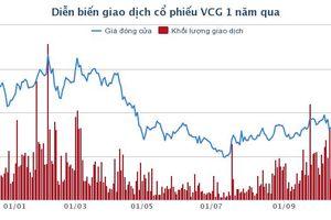 1 cá nhân, 3 tổ chức dự chi khoảng 5.500 tỷ đồng để mua 57,7% vốn Vinaconex từ SCIC