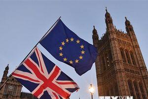 EU: Cuộc đàm phán Brexit đã đạt được 'tiến triển quyết định'