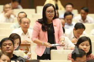 Đại biểu Quốc hội hiến kế ngăn chặn tình trạng chuyển giá ở Việt Nam