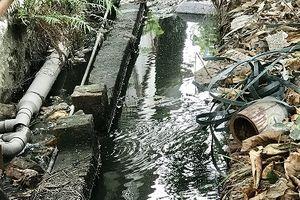 Cẩm Giàng (Hải Dương): Công ty Poshaco có chấp hành bảo vệ môi trường?