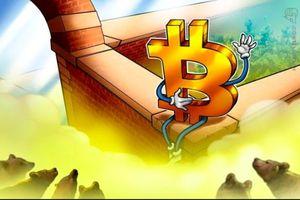 Giá tiền ảo hôm nay (15/11): Lý giải nguyên nhân giá Bitcoin tiếp tục lập đáy