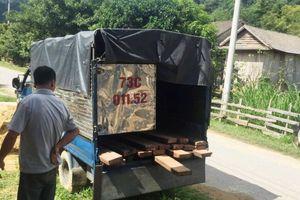 Quảng Bình: 3 kiểm lâm bị thương khi vây bắt 'lâm tặc'