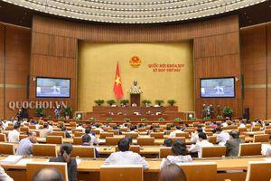 Quốc hội thảo luận về dự án Luật Giáo dục (sửa đổi)