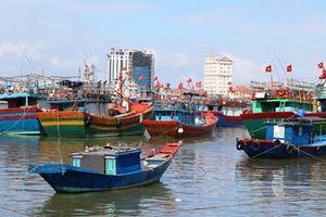 Thiếu lao động, nhiều tàu cá phải nằm bờ
