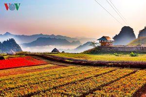 Bình nguyên xanh Khai Trung đẹp mê đắm lòng người
