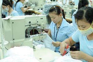 Doanh nghiệp FDI phía Nam 'đón sóng' CPTPP