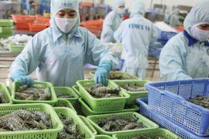 CPTPP có 'thắp sáng' hơn triển vọng ngành thủy sản?