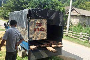 Điều tra vụ 3 kiểm lâm bị thương khi vây bắt xe chở gỗ lậu