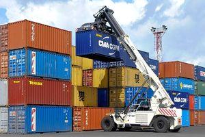 Kêu cứu khẩn cấp vì hàng loạt container bị ách tại cảng