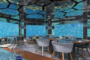 Nhà hàng dưới nước lớn nhất thế giới chuẩn bị hoàn thành
